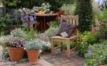 Dicas de Como Decorar seu Jardim quintal jardinagem verde